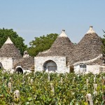 Trulli fra i vigneti