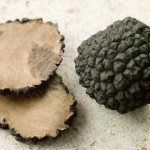 Tartufo nero dellUmbria
